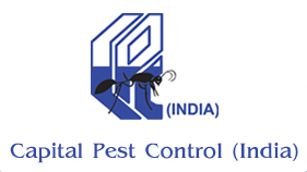 CAPITAL PEST CONTROL in Noida