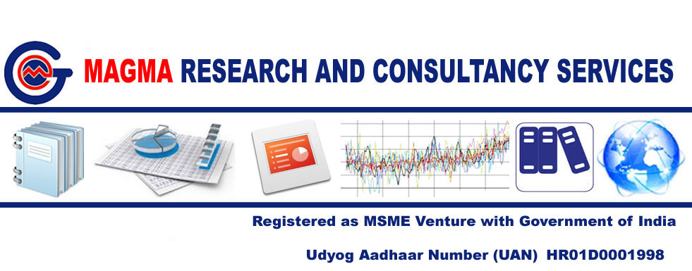 Magma Research and Consultancy Services in Delhi