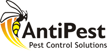 ANTIPEST Pest Control Solutions in Chandigarh