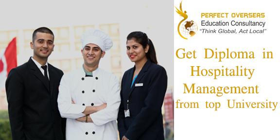 Perfect Overseas Education Consultancy in New Delhi